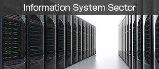 Information System Sector